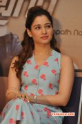 Actress Tamanna Recent Photo 735