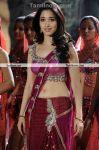 Actress Tamannah New Stills 6