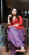 Albums Indian Actress Tamanna 7034