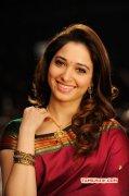 Aug 2015 Picture Tamil Actress Tamanna 677