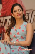 Gallery Film Actress Tamanna 3897