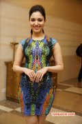Indian Actress Tamanna Jan 2015 Pic 3427