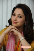 Movie Actress Tamanna Aug 2015 Gallery 7809