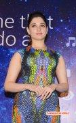 Recent Pic Tamanna Actress 3153