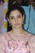 Recent Picture Tamanna Cinema Actress 4472