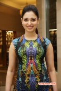 South Actress Tamanna Recent Image 1688