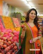 Tamanna Actress Picture 8868