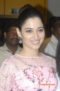Tamanna Actress Wallpaper 4666