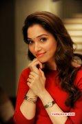 Tamanna Cinema Actress 2015 Pic 5054