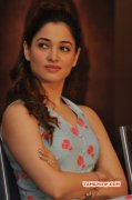 Tamanna Cinema Actress New Album 5507