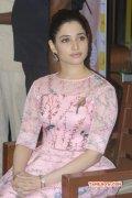 Tamanna Film Actress New Galleries 2803