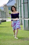 Tamanna Latest Pictures13