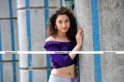 Tamanna Latest Pictures16