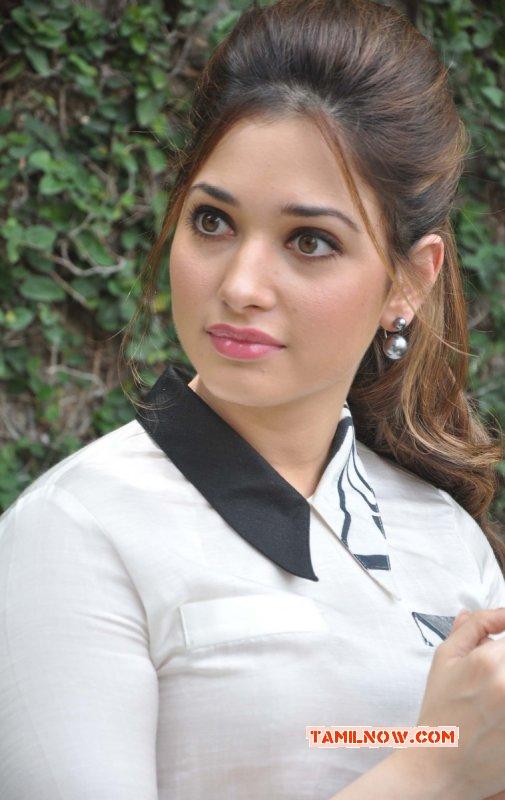 Tamanna Movie Actress New Pic 5756