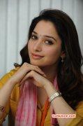 Tamanna Tamil Actress New Image 6626