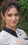 Tamanna Tamil Heroine Jul 2015 Picture 3186