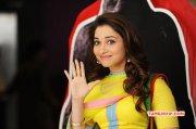 Tamanna Tamil Movie Actress Galleries 4296