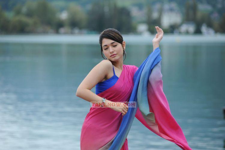 Tamil Actress Tamanna 3312