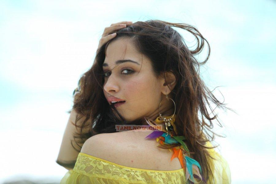 Tamil Actress Tamanna 7114
