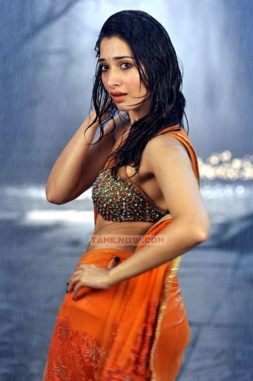 Tamil Actress Tamanna 7974
