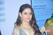 Tamil Movie Actress Tamanna Recent Photo 652