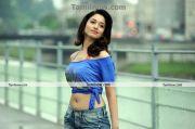 Thamanna New Hot Stills010