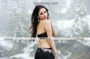 Thamanna New Hot Stills013