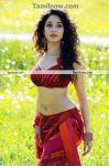 Thamanna New Hot Stills014