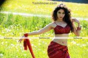 Thamanna New Hot Stills017