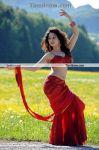 Thamanna New Hot Stills021