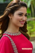 2015 Galleries Tamannah Film Actress 3069