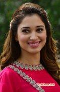 2015 Gallery South Actress Tamannah 6398