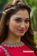 2015 Picture Film Actress Tamannah 2463
