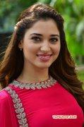 2015 Picture Film Actress Tamannah 7200