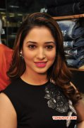 2015 Picture Tamannah Tamil Movie Actress 8600