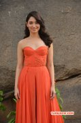 2016 Galleries Heroine Tamannah 2921