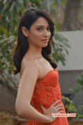 2016 Picture Tamannah Indian Actress 5140