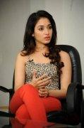 2020 Wallpapers Tamannah Cinema Actress 8252