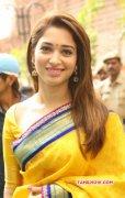 Actress New Photo Tamanna In Yellow Sari 722