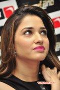 Actress Tamannah New Gallery 6100