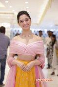 Actress Tamannah Saravana Stores Padi Inauguration 986