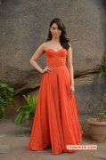 Actress Wallpaper Tamannah Hot In Orange Dress 521