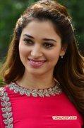 Album Tamil Movie Actress Tamannah 7696