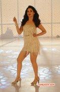 Cinema Actress Tamannah Recent Pic 4010