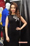 Latest Gallery Tamannah Tamil Actress 3395