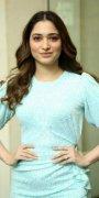 Latest Wallpapers Tamannah Indian Actress 8504