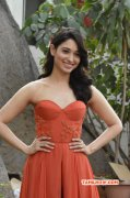 Pic Tamannah Hot In Orange Dress 76