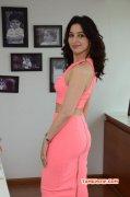 Recent Wallpaper Tamannah South Actress 9362