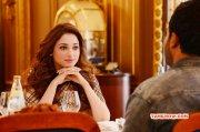 South Actress Tamannah Latest Wallpapers 5597