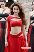 South Actress Tamannah Mar 2016 Wallpapers 2722